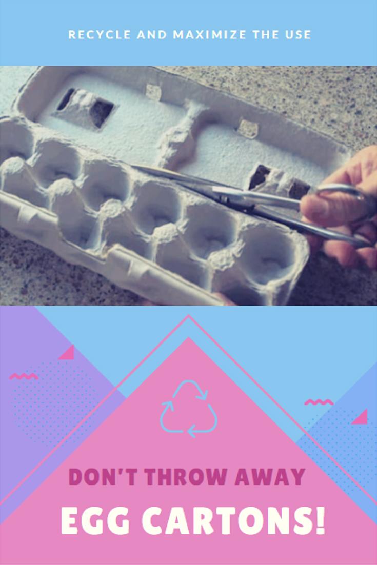 Don't Throw Away Egg Cartons!