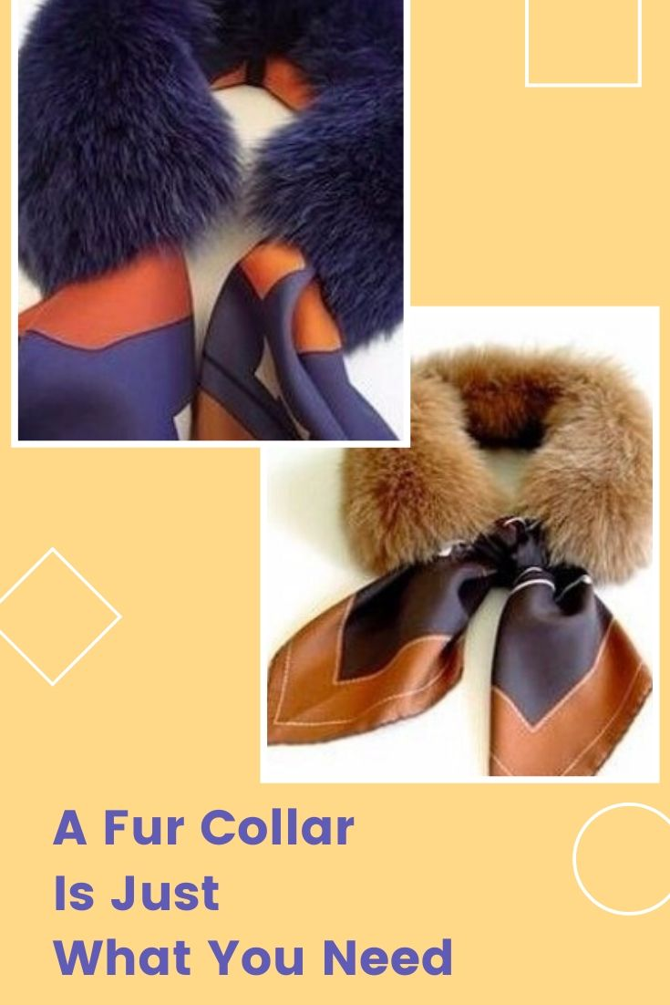 A Fur Collar Is Just What You Need
